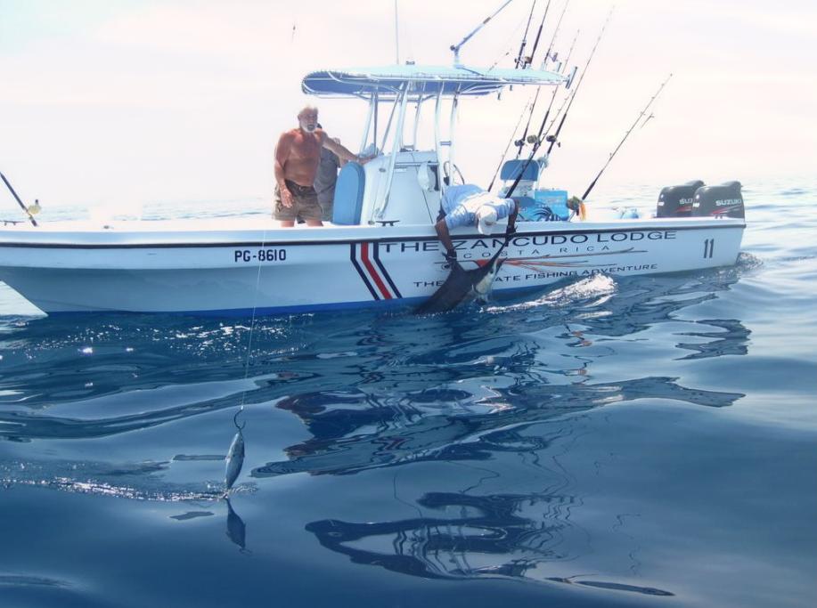 Outdoor adventures worldwide costa rica pacific for Costa rica fishing calendar