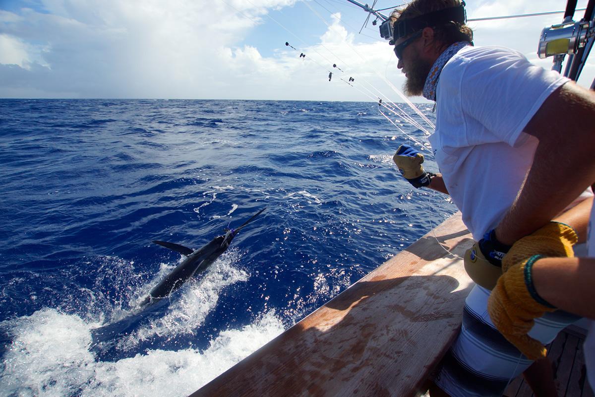 Outdoor Adventures Worldwide Costa Rica Sportfishing