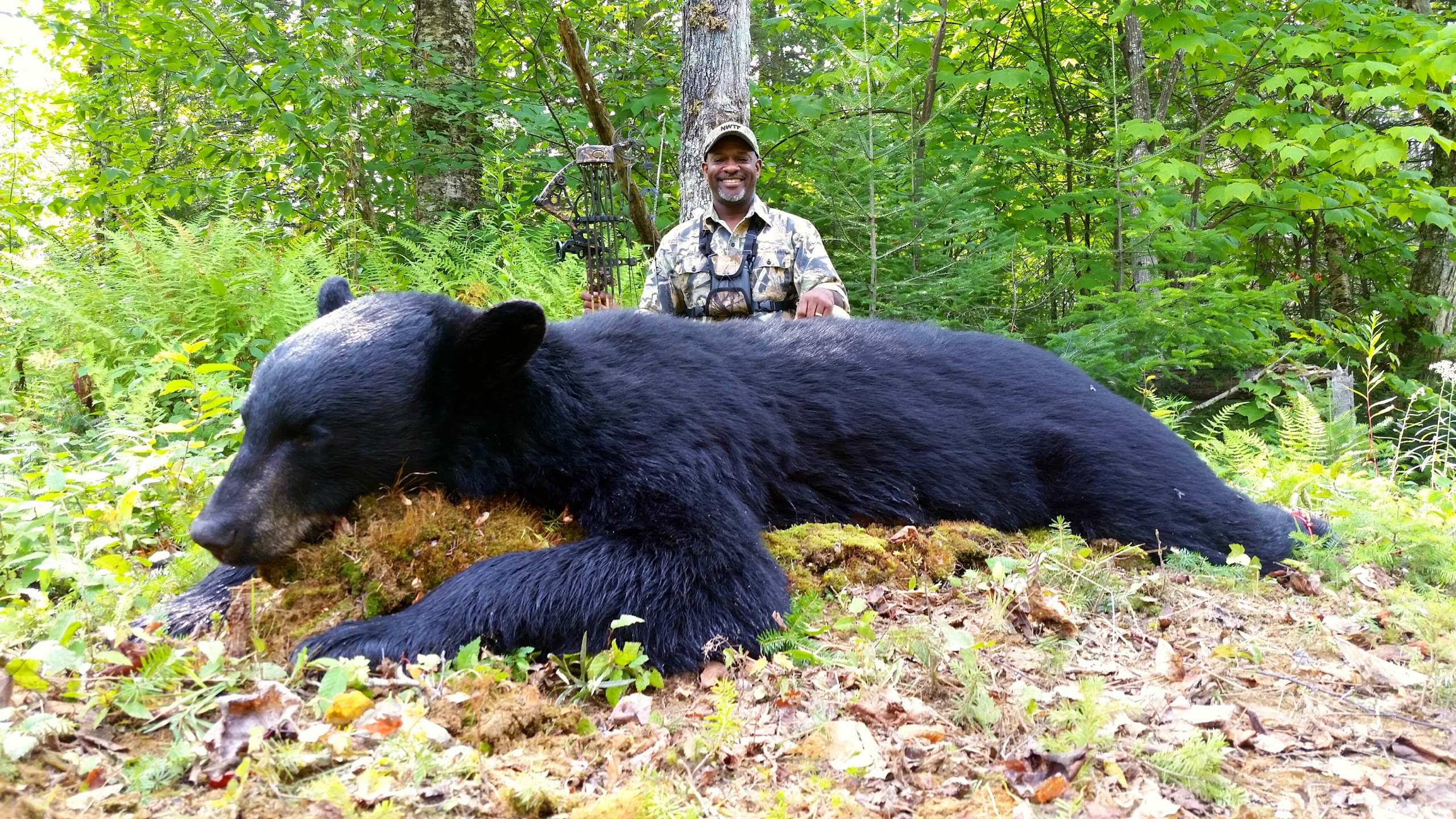 Outdoor adventures worldwide maine black bear option 1 for Maine non resident fishing license