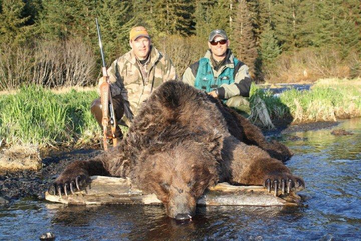 brown in alaska