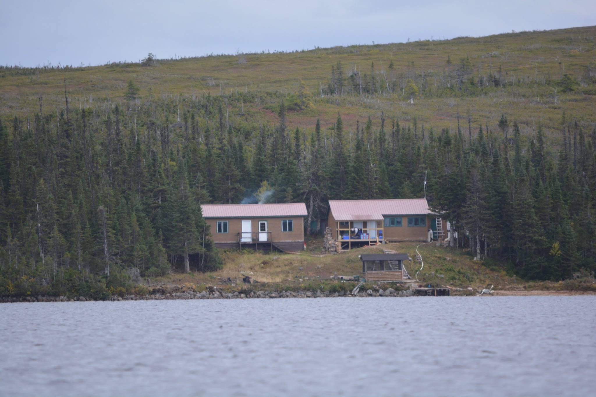 Outdoor Adventures Worldwide | Newfoundland Moose