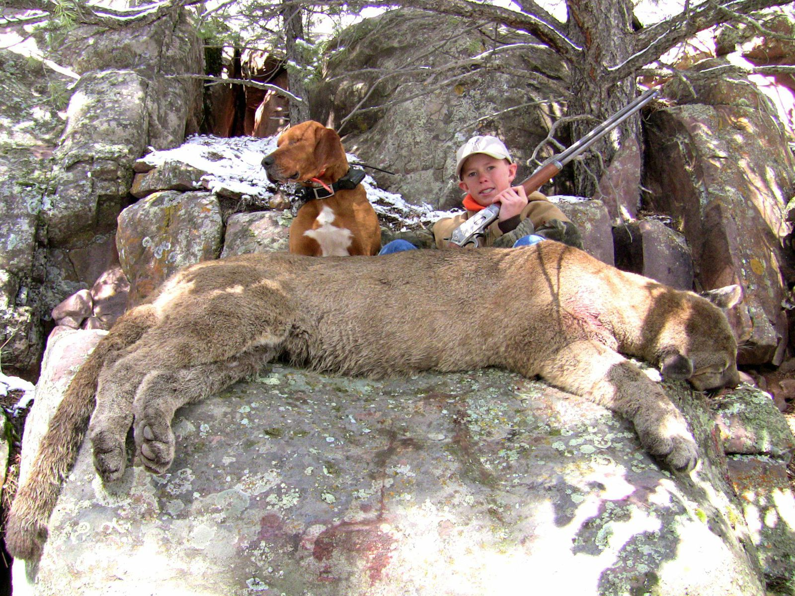Outdoor adventures worldwide utah cougar hunting for Utah non resident fishing license